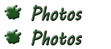 Laurelton Art Society Photos Page